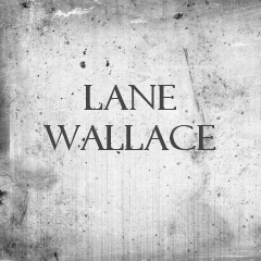 Lane Wallace Guest Blogs
